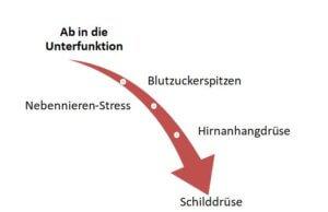 Hashimoto Symptome Blutzucker