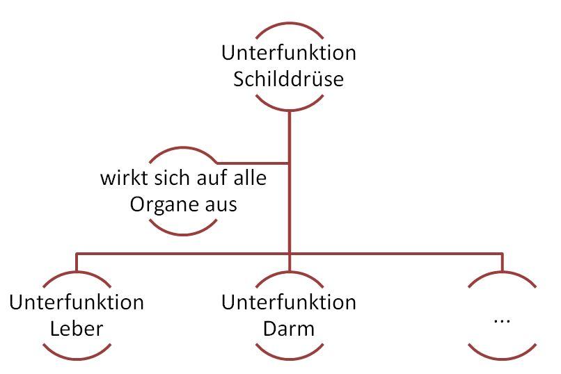 Unterfunktion aller Organe